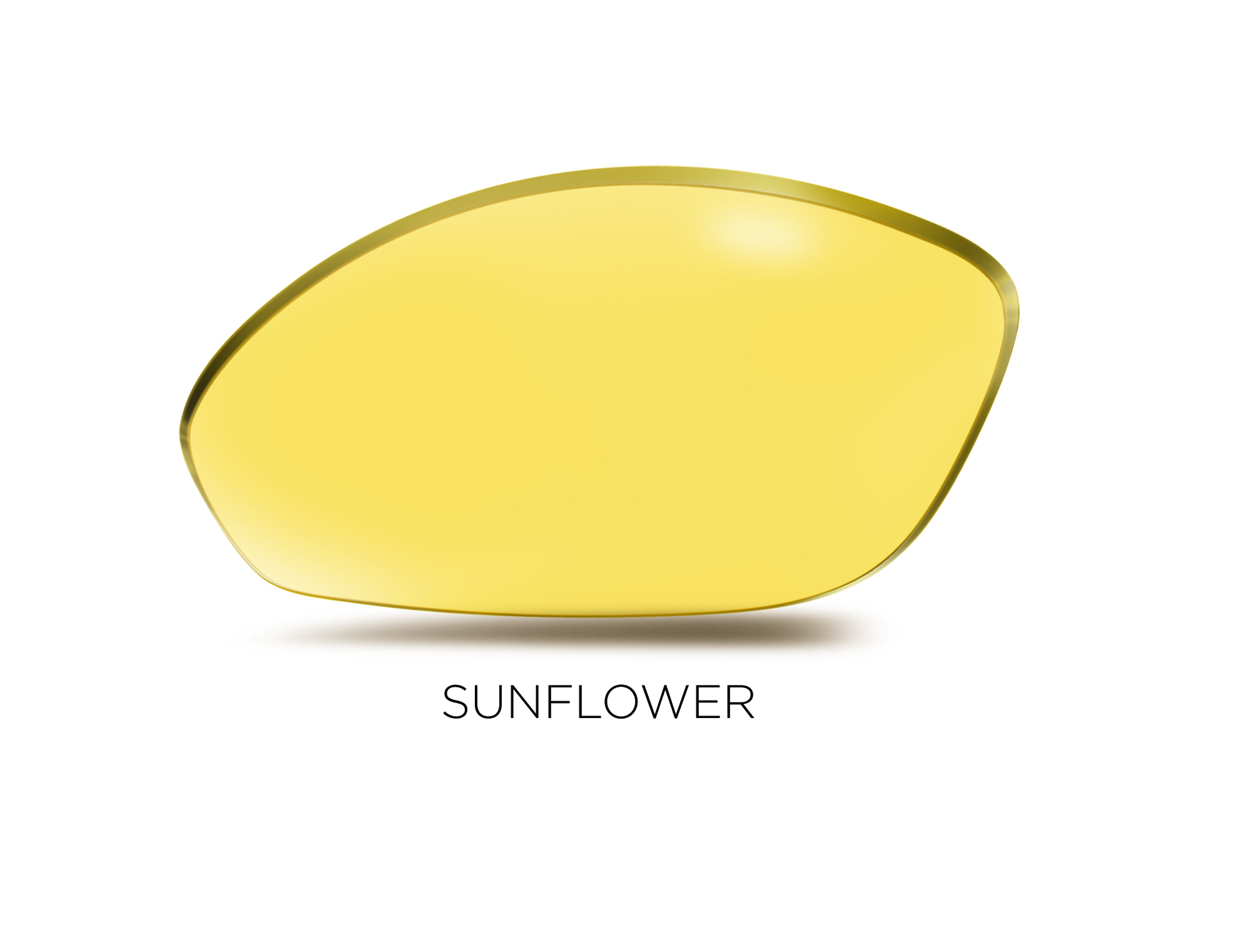 Sunflower_lens_PRINT